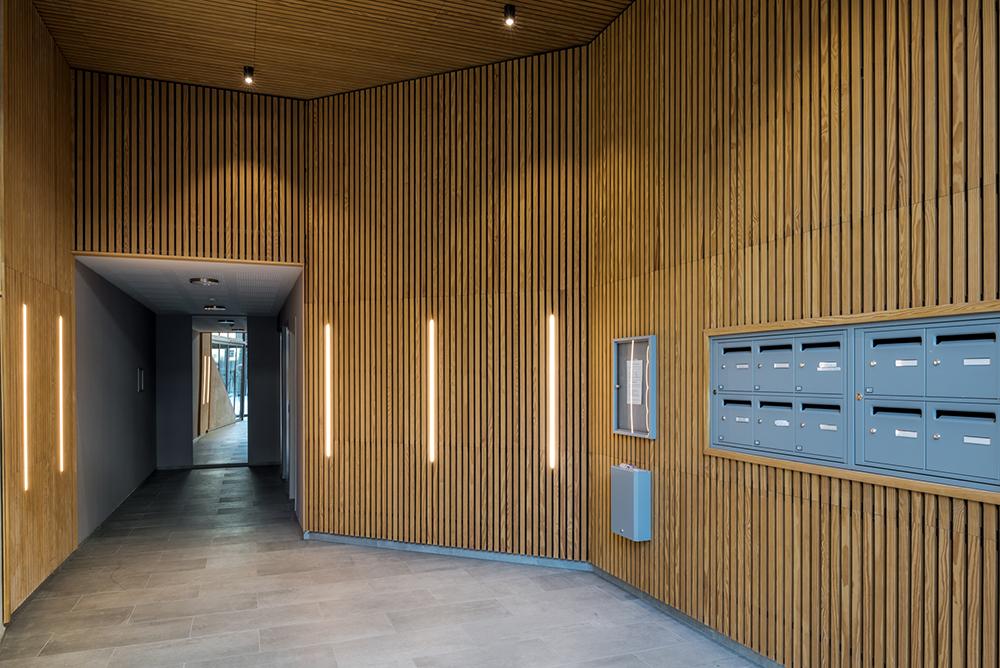 laudescher réalisation plafond mur bois acoustique ginko